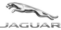 jaguar_logo_detail
